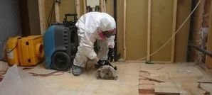 Technician Cleaning Up Flooded Basement